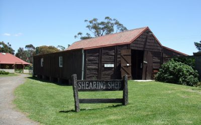 'Ashdale' Shearing Shed and Fowler Steam Traction Engine
